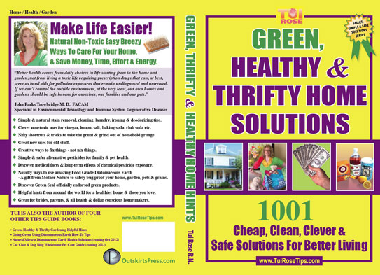 Green & Thrifty Home Cleaning Guide
