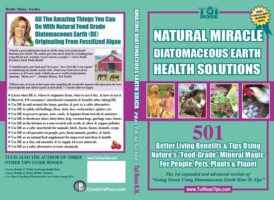 Natural Miracle Diatomaceous Earth  Health Solutions