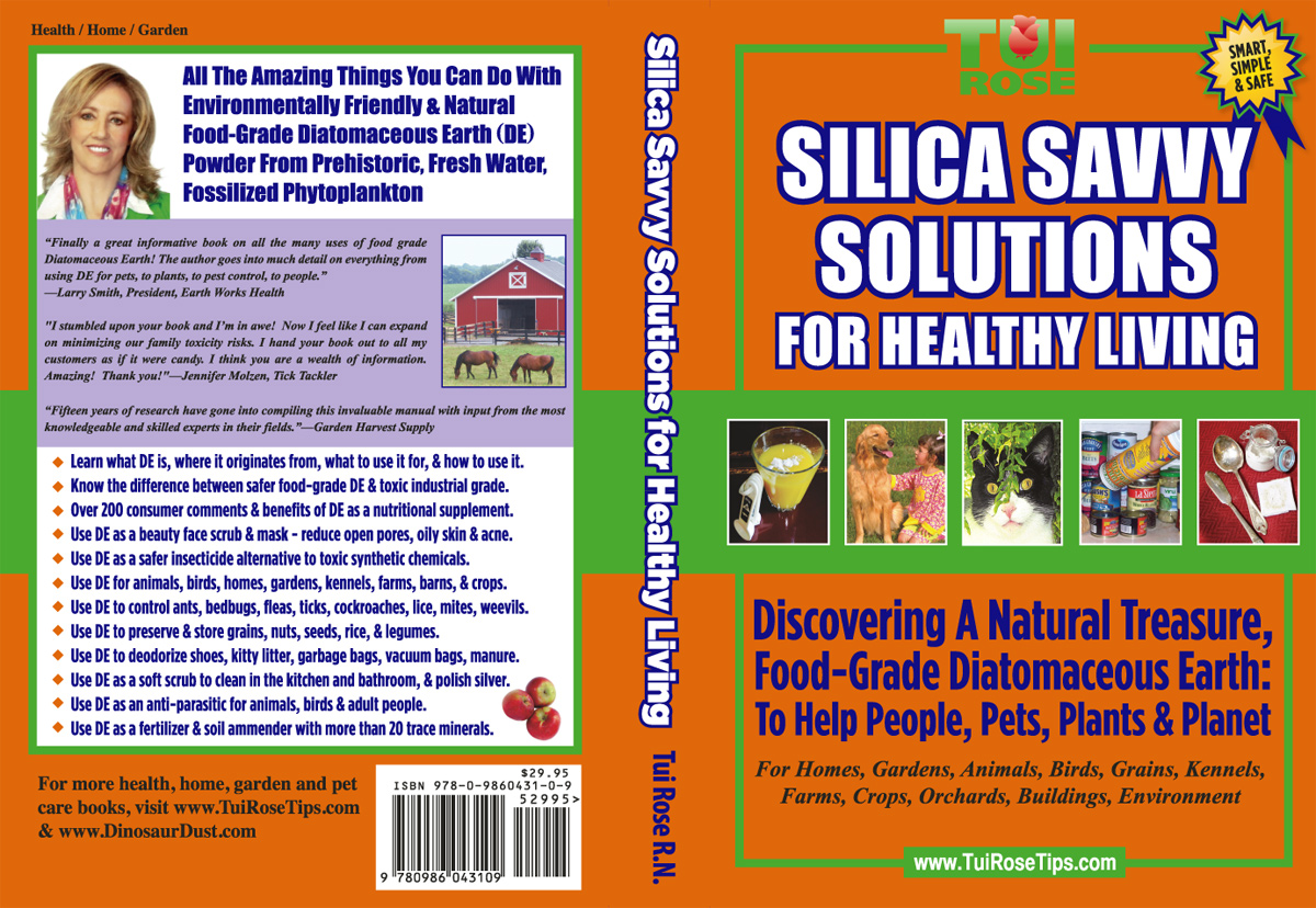silica savvy solutions for healthy living discovering a natural